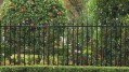001_front_fence_with_melrose_spears